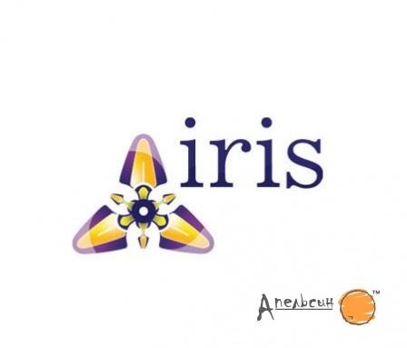 Дизайн логотипа магазина одежды Iris